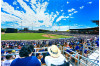 Dodgers Spring Training Tickets On Sale Monday