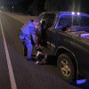K-9 Cops Catch Canyon Country Suspect