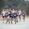 TMU Cross Country Poised for Podium Finish