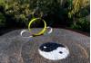 """Jan. 10: """"Zen Space"""" Art Reception at Town Center"""