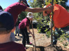 Feb. 10: Tree Planting Party in Placerita Canyon
