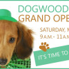 March 17: Dogwood Park Grand Opening Paw-ty in Canyon Country