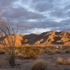 BLM Issues EIR for Mohave Desert Use, Seeks Public Comment