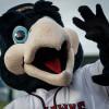 JetHawks Bullpen Falters in Late Loss to Giants Sunday