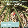 April 14, April 19: SCV Water Gardening Classes