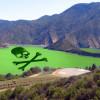 Algae in Pyramid Lake at 'Danger' Level – Keep Out