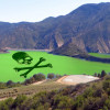 Algae in Pyramid Lake at 'Danger' Level – Keep Out
