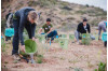 SCV Water Donates Water to TreePeople's Local Forest Restoration