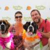 Oct. 14: Bow-Wows & Meows 18th Annual Pet Fair