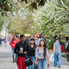 CSUN Receives Nearly $4 Million Grant from National Science Foundation