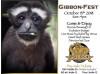 Oct. 13: Gibbon-Fest at Gibbon Conservation Center