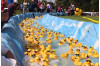 Annual Rubber Ducky Festival Raises Funds to Provide Access to Healthcare