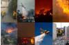 Trump Threatens to Halt California Wildfire Recovery Funding