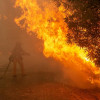 Newsom Warns of Wildfire Risk to Urban Communities Across California