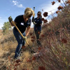 SCV Water, TreePeople, Sierra Club Team for Restoration Field Day