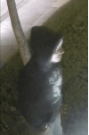 SCV Sheriff's Seek Help in Identifying Vandalism Suspect