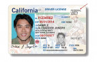 DMV Warns Customers of REAL ID Phishing Scam
