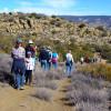 May 19: Spanish-Language Tour of Tehachapi Native American Village Site