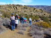 May 19: Spanish-Language Tour of Tehachapi Native American Village Site