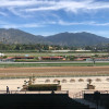 California Horse Racing Rules Tightened Amid Spate of Deaths