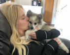 Ash, Ella Reunited: Dog Sold by Ex Returned