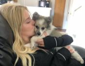 Ash, Ella Reunited: Dog Sold by Ex Returned