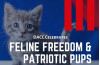 July 1-14: Feline Freedom, Patriot Pup Pet Adoption Drive