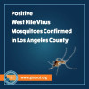 West Nile Virus Confirmed in Boyle Heights, Whittier