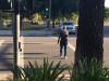 SCV Deputies Cite 74 in Bike, Pedestrian Operation