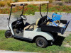 Deputies Nab Teens Sought in Golf Cart Theft