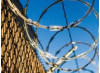 California Ban on Private Prisons Challenged as Unconstitutional