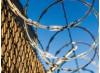 California Bans For-Profit Prisons, Immigrant Detention Centers