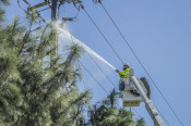 Downed Power Lines Spark Small Fire, Power Outage in Newhall