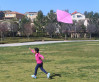 CRY-LA Kite Festival Raises Funds for Basic Child Rights