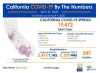 California Friday: 19,472 Cases, 541 Deaths; 2,024 Health Care Workers Positive