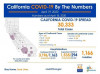 California Sunday: 30,333 Cases Incl. 3,523 Healthcare Workers; 1,166 Deaths