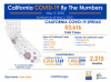 California Sunday: 53,616 Cases, 2,215 Deaths; 33 Healthcare Worker Deaths