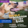 Petco, County Animal Care Launch Campaign to Help Save Twice as Many Pets