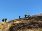 Cambria Fire Scorches 5 Acres in Placerita Canyon