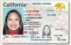 DMV Encourages Online Driver's License Renewal, Extends Deadlines