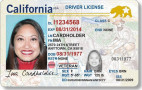 DMV Encourages Online Driver's License Renewal, Extends Deadlines