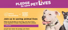 Petco Matches Donations, L.A. County Animal Care Foundation Raises $50K