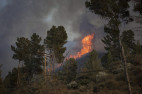 Martindale Fire Remains at 230 Acres, 40% Containment