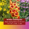 SCV Water Announces October Virtual Gardening Class