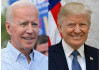 Biden Defeats Trump, Wins the White House