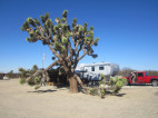 Camp Hosts Needed at Saddleback Butte State Park, New Updates Announced for Mojave Area State Parks
