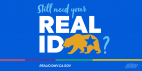 DMV Offers Free REAL ID Upgrade for Eligible Californians