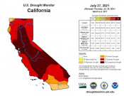 New Poll Finds Water Shortages, Drought are Californians' Biggest Environmental Concerns