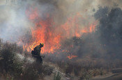 Residents Reminded of Wildfire Action Plan as Officials Brace for Fire Season