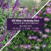 Learn About Perennials & Natives at SCV Water's October Gardening Class